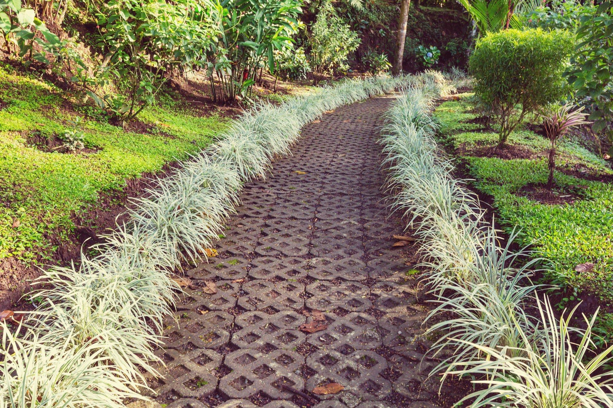 Jardinería Las Palmas