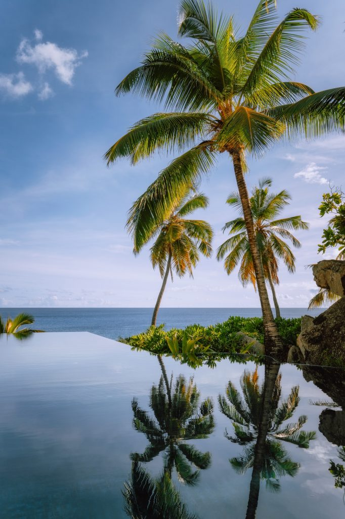 Infinity pool with coconut palm trees and ocean view